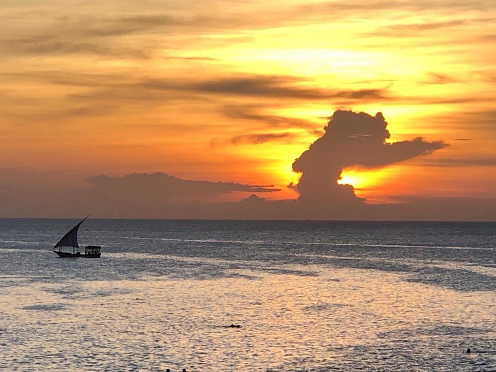 Boat Tour of Menai Bay Islands (US$70/person)