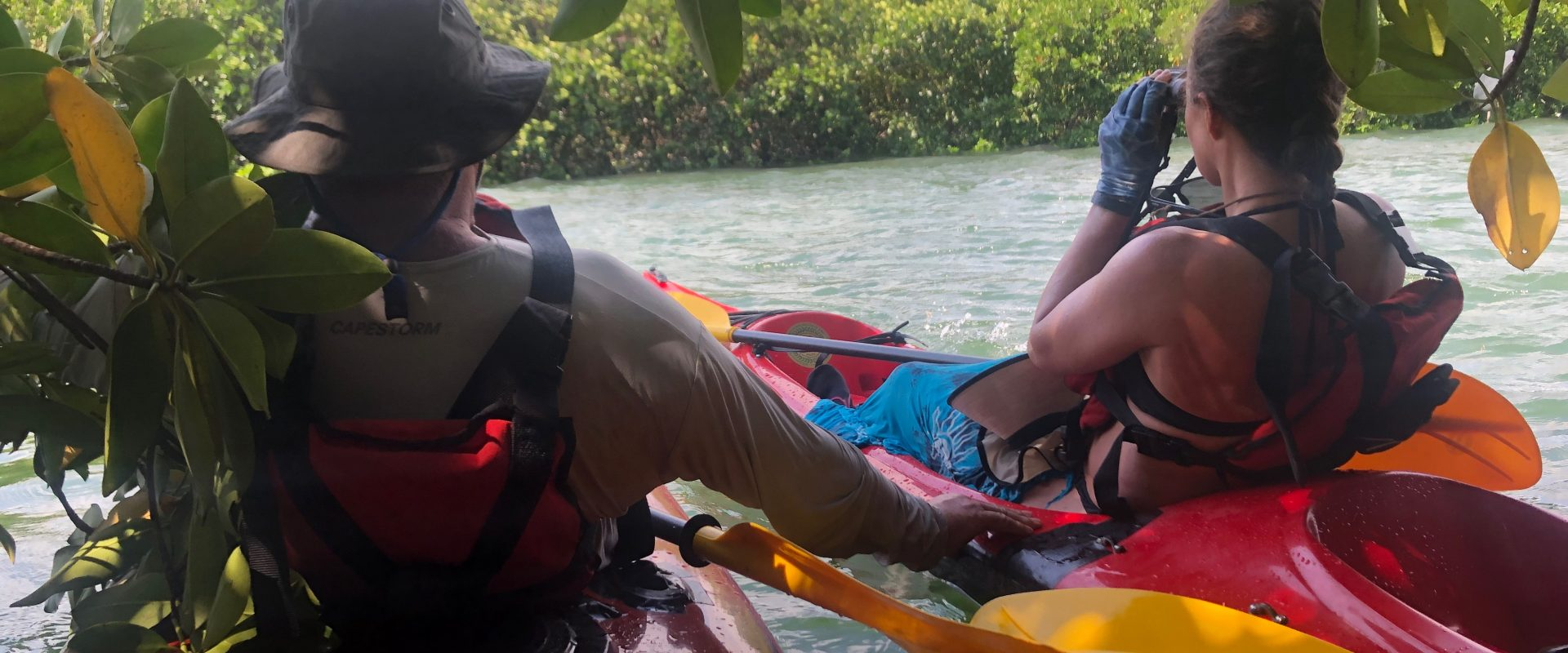 Kayak and Camping 5 Day Safari throughout Menai Bay Conservation Area (US$950/person)